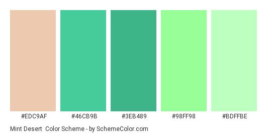 Mint Desert Color Scheme » Green » SchemeColor.com